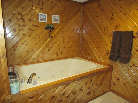 Kishauwau Country Cabins : Wilderness whirlpool tub