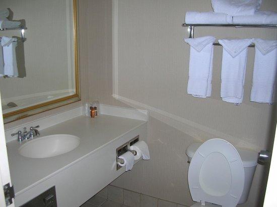 Sheraton Cleveland Airport Hotel: Bath
