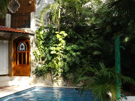Eco-Hotel El Rey Del Caribe: Refreshing Pool