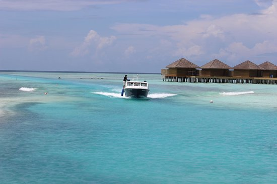 Anantara VeliMaldivesResort: view from the boat drop off point