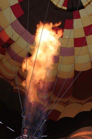 A Grape Escape Balloon Adventure : hot air!