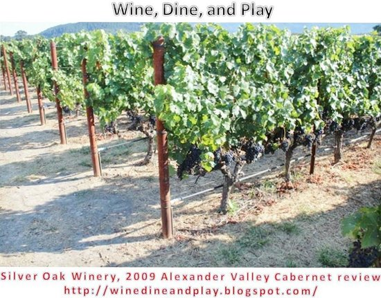 Silver Oak Cellars : vineyard