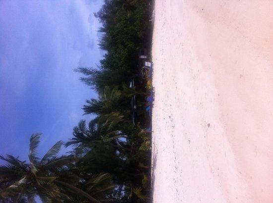 Castaway Resort: beach at castaway - paradise