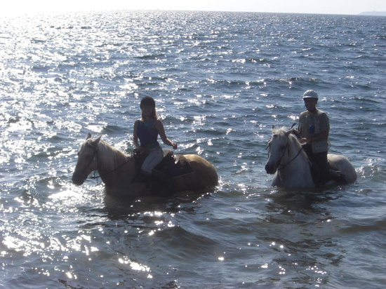Arborea, Italia: на море с лошадьми