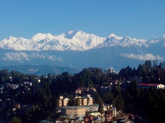 Sinclairs Darjeeling : Bright & Glowing