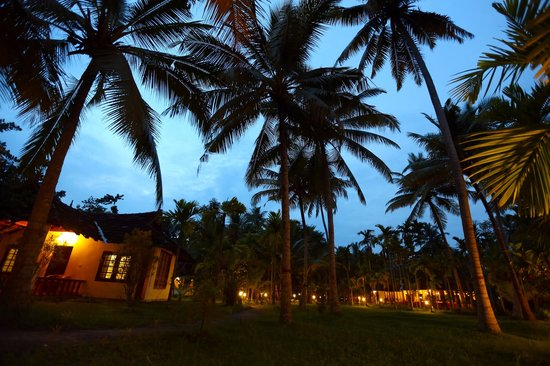 Palmgrove Lake Resort: Resort at night