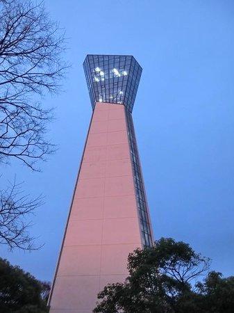 Iwaki Marine Tower: 夕焼けが映って