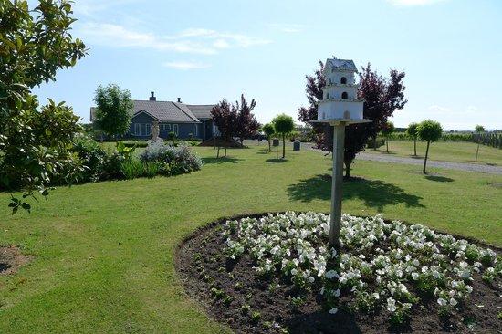 The Vines: Spacious garden