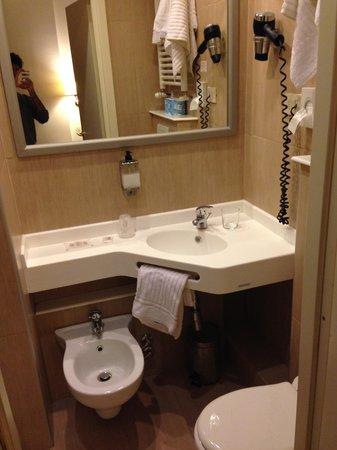 Hotel Torino: bagno