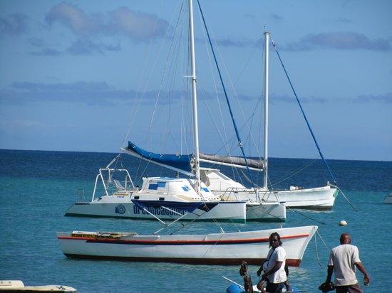 Dreamcatcher Catamaran Tours: Vorfreude