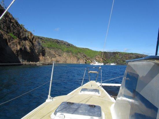 Dreamcatcher Catamaran Tours: In der Bucht