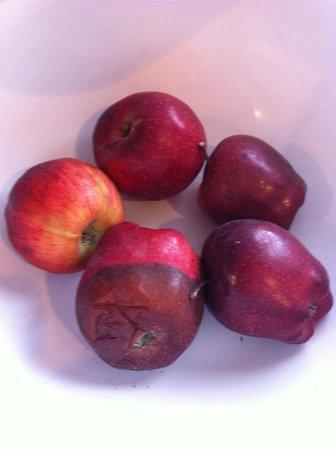 Comfort Suites Near Seaworld: Rotten apples