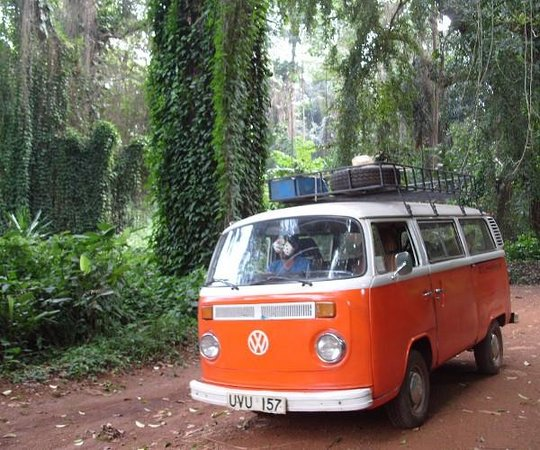 ‪Kombi Nation Tours - Day Trips‬