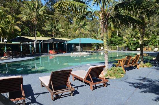 NRMA Murramarang Beachfront Nature Resort : Large pool area.