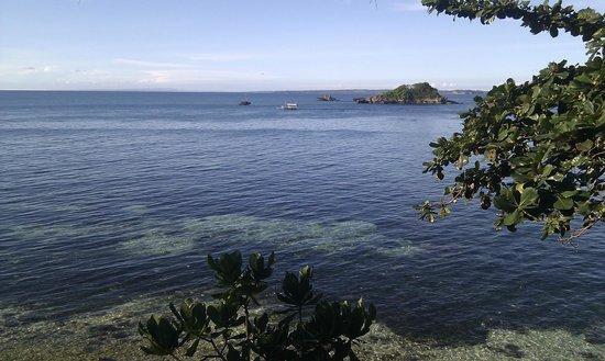 Tepanee Beach Resort: vistas desde la habitación