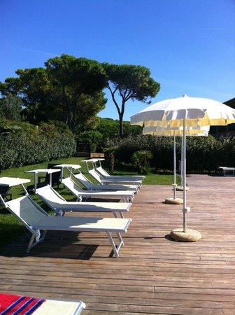 Hotel dei Pini : бассейн