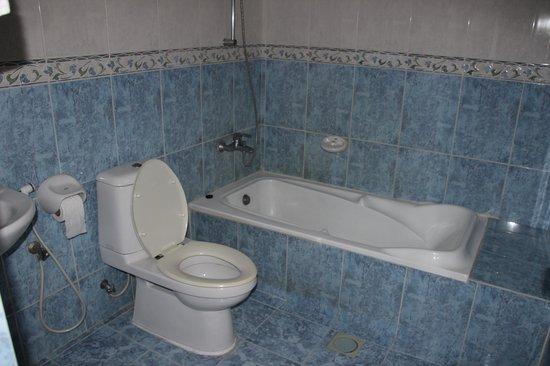 Aldiyar Hotel : bathroom 1