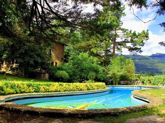 Artinano Etxea : Jardín