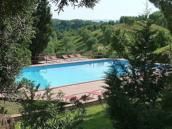 Azienda Agricola il Poggio srl : Pool