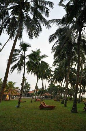 AVANI Bentota Resort & Spa: Beach Area