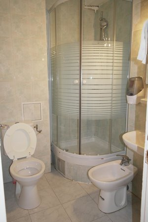 Hotel Altona: Bagno in camera, con doccia provvista di chiusura vetrata
