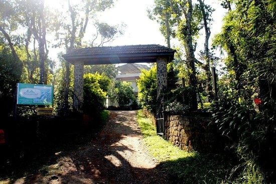Beaumont Plantation Retreat : Entrance