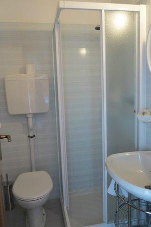 Hotel Alpino: Небольшая, но комфортная и чистая ванная комната