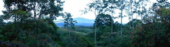 Finca Integral Dikla: Vista desde la terraza