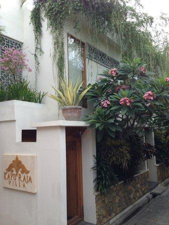 Villa Kayu Raja : The view of our villa