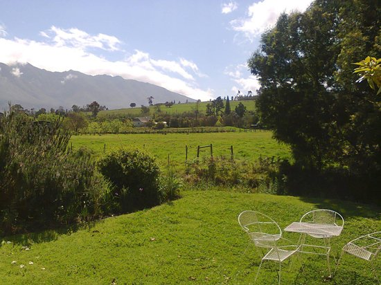 Wildebraam Berry Estate: lovely view outside