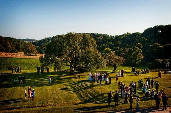 Boconnoc House: Views of guests enjoying drinks on the lawns
