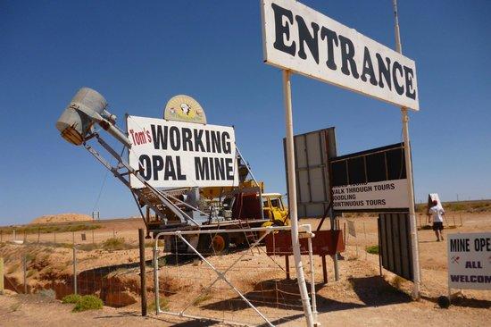Underground Bed & Breakfast: Tom's Opal Mine