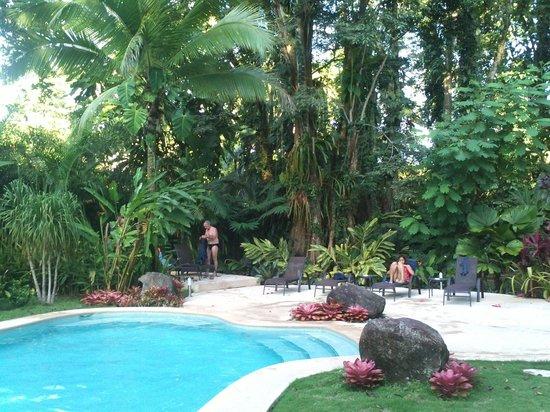 Hotel Shawandha Lodge : La piscina