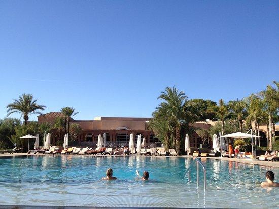 Pullman Marrakech Palmeraie Resort and Spa: la piscine