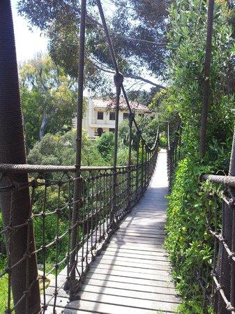 Camps Bay Retreat: Hängebrücke