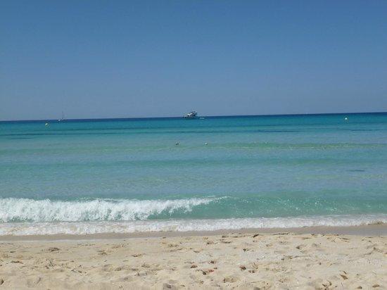 Gavimar Cala Gran Costa del Sur Hotel & Resort: Strand Cala d'Or