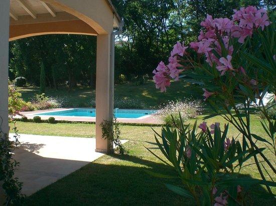 La Lilas des Fargues : Le jardin depuis la terrasse