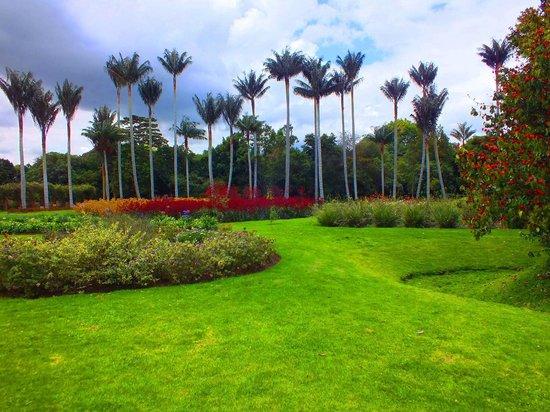 Park grounds - Picture of Jardin Botanico de Bogota Jose Celestino ...