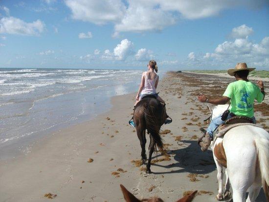 Horses On The Beach: Corpus Christi: At Horses on the Beach