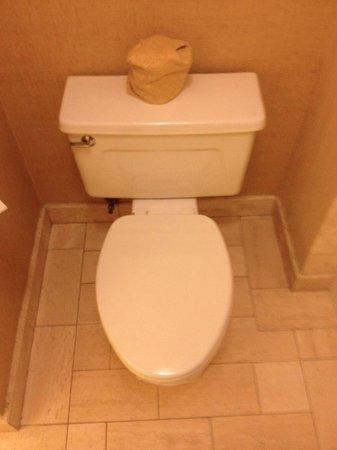 Island Hotel Newport Beach : WC