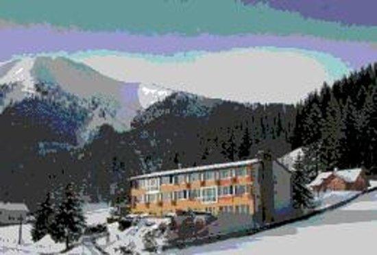 Hotel Sonnhof: Direkt an der Loipe, Schneeschuh u. Tourenparadies