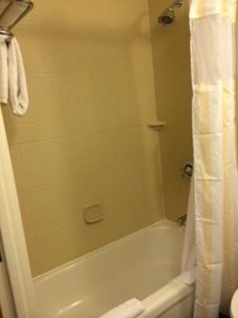 Hilton Garden Inn Boca Raton : Nice and clean bathroom