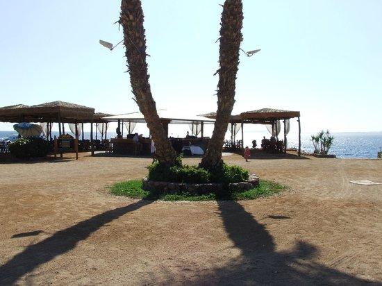 El Fanar: Scenic view