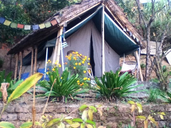 Himalayan Yoga Academy and Retreat: Our Tent Room Comfy and clean