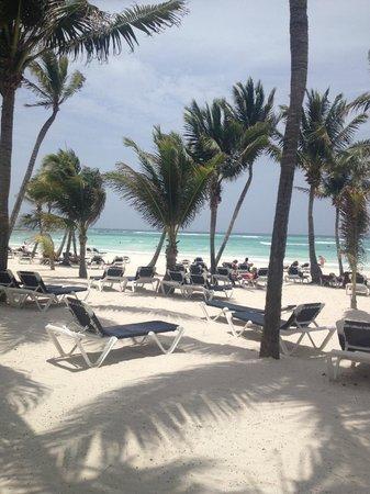 Barcelo Maya Beach: Пляж отеля