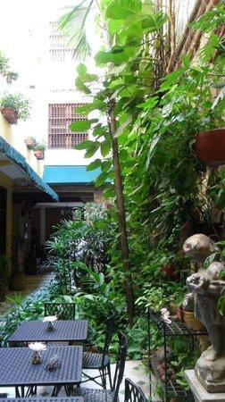 Casa La Fe - a Kali Hotel: Breakfast and Happy hour area