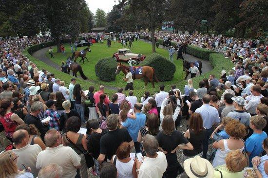 Baden Racing_Racetrack Iffezheim : Führring mit Pferdepräsentation