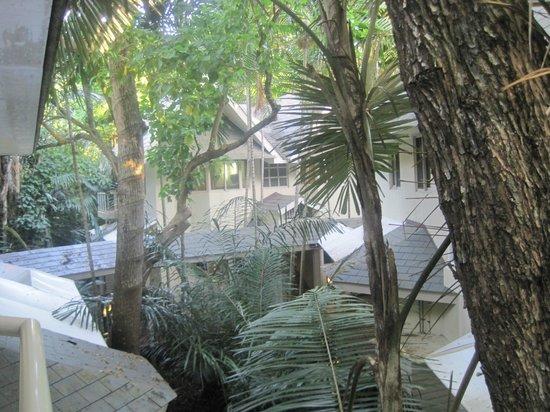 Green Island Resort : l'Hotel