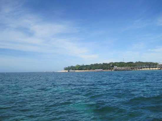 Green Island Resort : L'isola vista in distanza.