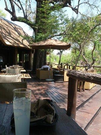 andBeyond Nxabega Okavango Tented Camp : Common area